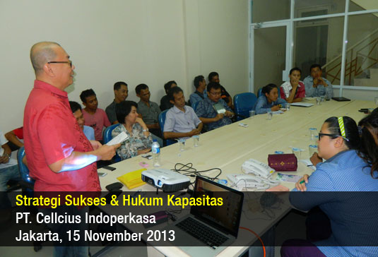 Strategi Sukses – Cellcius – November 2013
